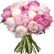 """Bouquet of 35 pions"" in the online flower shop roza.od.ua"