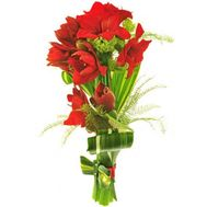 Bouquet of 5 Amaryllis - flowers and bouquets on roza.od.ua