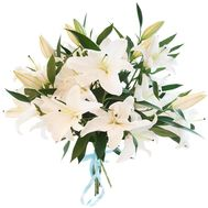 5 white lilies - flowers and bouquets on roza.od.ua