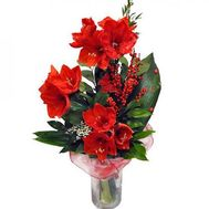 Bouquet of Amaryllis - flowers and bouquets on roza.od.ua