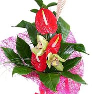 Bouquet of anthurium and orchids - flowers and bouquets on roza.od.ua