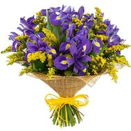 Bouquet of irises and mimosa - flowers and bouquets on roza.od.ua