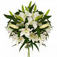9 white lilies - flowers and bouquets on roza.od.ua