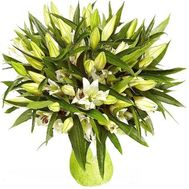15 white lilies - flowers and bouquets on roza.od.ua