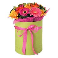 Gerberas in a hat box - flowers and bouquets on roza.od.ua
