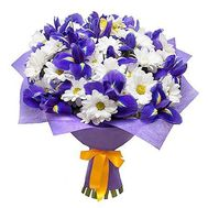 Chrysanthemums and irises - flowers and bouquets on roza.od.ua