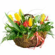 Корзинка с тюльпанами - цветы и букеты на roza.od.ua