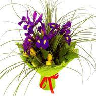Тюльпаны и ирисы - цветы и букеты на roza.od.ua