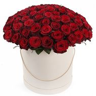 101 red rose in a box - flowers and bouquets on roza.od.ua