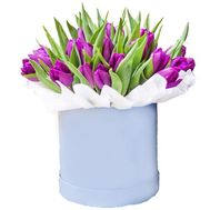 Purple tulips in a box - flowers and bouquets on roza.od.ua