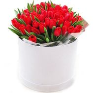 Red tulips in a box - flowers and bouquets on roza.od.ua