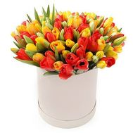 Multicolored tulips in a box - flowers and bouquets on roza.od.ua