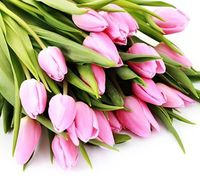 Як привітати з 8 Березня оригінально - цветы и букеты на roza.od.ua