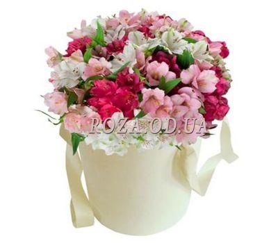 """""""Альстромерии в коробке"""" в интернет-магазине цветов roza.od.ua"""