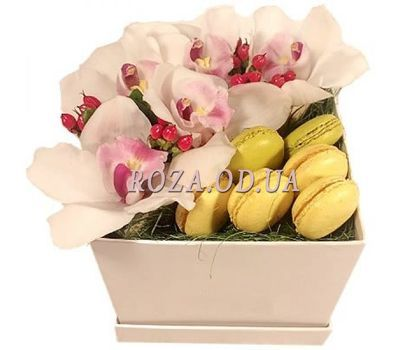 """Orchids and macaroons"" in the online flower shop roza.od.ua"
