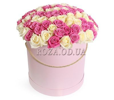 """101 white and pink roses in a box"" in the online flower shop roza.od.ua"