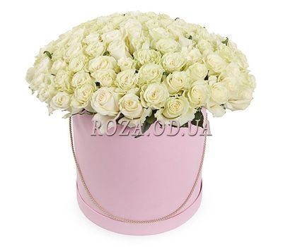"""""""101 белая роза в коробке"""" в интернет-магазине цветов roza.od.ua"""