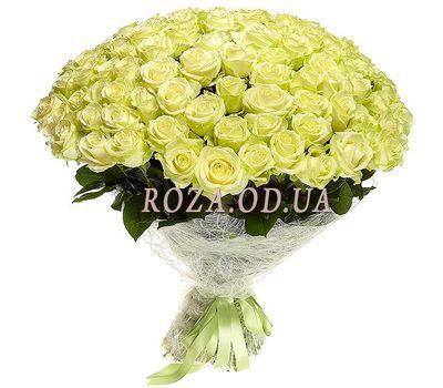 """""""101 роза Одесса"""" в интернет-магазине цветов roza.od.ua"""