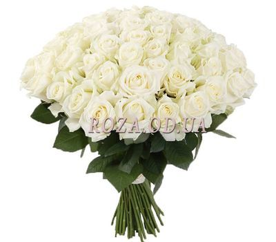 """55 white roses"" in the online flower shop roza.od.ua"