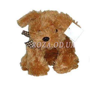 """Dog 20-30 cm"" in the online flower shop roza.od.ua"