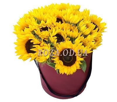 """21 sunflowers in a box"" in the online flower shop roza.od.ua"