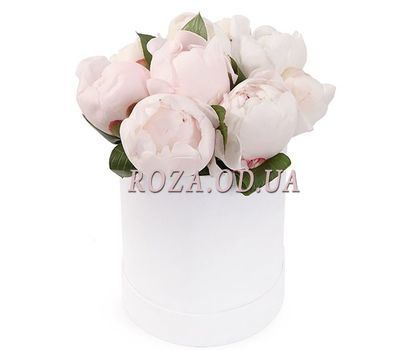 """""""White peonies in a box"""" in the online flower shop roza.od.ua"""