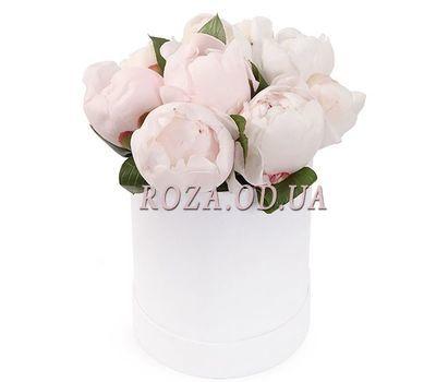 """""""Белые пионы в коробке"""" в интернет-магазине цветов roza.od.ua"""