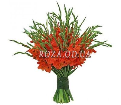 """Large bouquet of gladiolus"" in the online flower shop roza.od.ua"