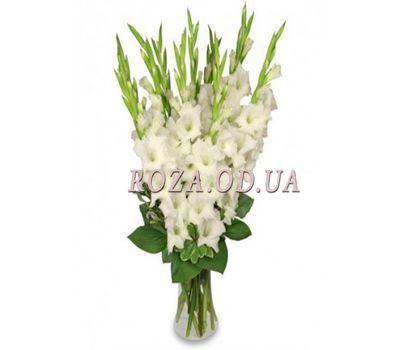 """""""Букет из 15 белых гладиолусов"""" в интернет-магазине цветов roza.od.ua"""