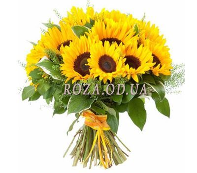"""Bouquet of 19 sunflowers"" in the online flower shop roza.od.ua"