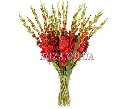 """Bouquet of 21 red gladiolus"" in the online flower shop roza.od.ua"