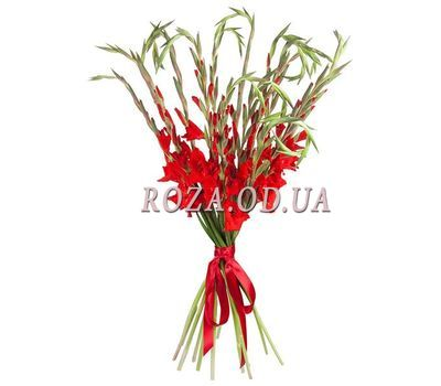 """Bouquet of red gladioluses"" in the online flower shop roza.od.ua"