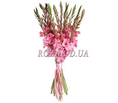"""Bouquet of pink gladiolus"" in the online flower shop roza.od.ua"