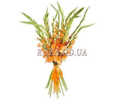 """""""A bright bouquet of gladiolus"""" in the online flower shop roza.od.ua"""