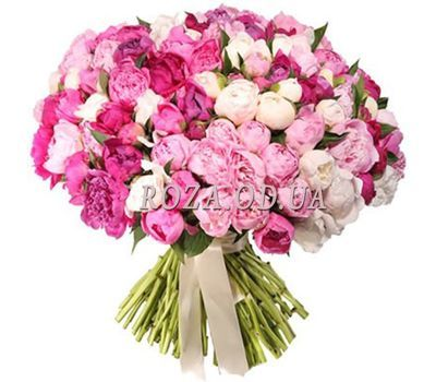 """101 peonies"" in the online flower shop roza.od.ua"