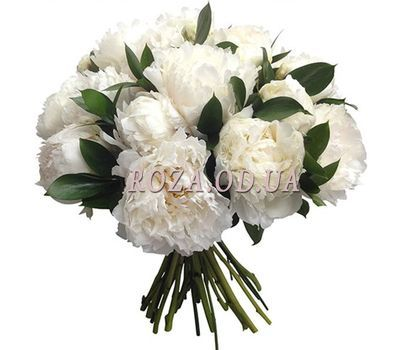 """15 white pions"" in the online flower shop roza.od.ua"