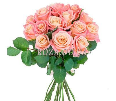"""17 peach roses"" in the online flower shop roza.od.ua"