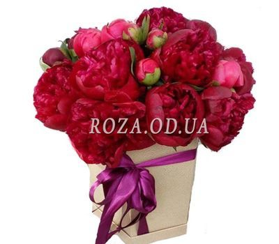 """Maroon peonies in a box"" in the online flower shop roza.od.ua"