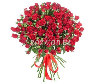 """Bouquet of 17 cluster red roses"" in the online flower shop roza.od.ua"