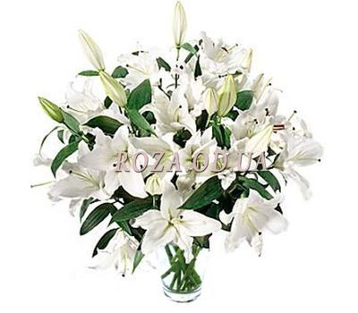 """Bouquet of 19 lilies"" in the online flower shop roza.od.ua"