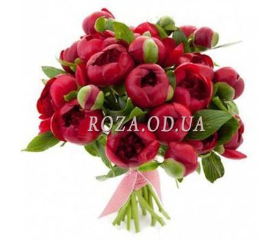 """""""Bouquet of 25 claret pions"""" in the online flower shop roza.od.ua"""