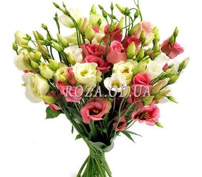 """Bouquet of 27 August"" in the online flower shop roza.od.ua"