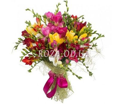 """Bouquet of 29 freesias"" in the online flower shop roza.od.ua"