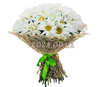 """Bouquet of 35 chamomiles"" in the online flower shop roza.od.ua"