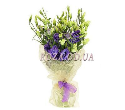 """Bouquet of 9 Augusta"" in the online flower shop roza.od.ua"