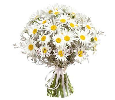 """Bouquet of field chamomiles"" in the online flower shop roza.od.ua"
