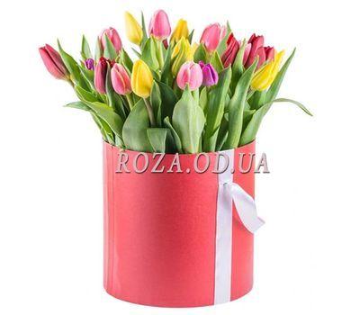 """""""21 разноцветный тюльпан"""" в интернет-магазине цветов roza.od.ua"""