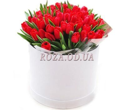 """35 red tulips in a box"" in the online flower shop roza.od.ua"