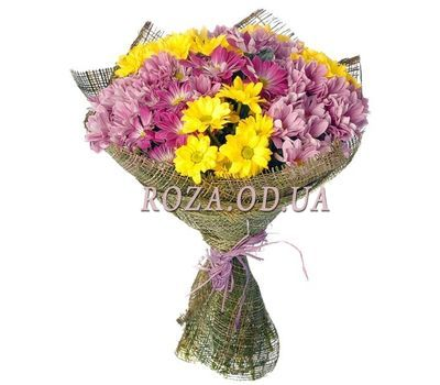 """11 multi-colored chrysanthemums"" in the online flower shop roza.od.ua"