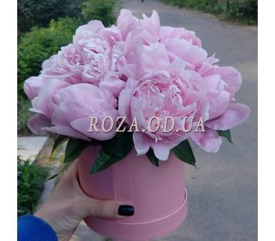 """Piony-v-korobke"" in the online flower shop roza.od.ua"